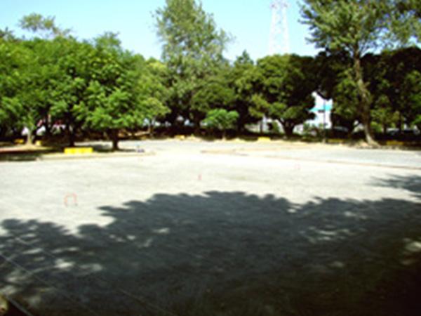 自由広場画像